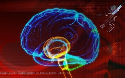 Documentaire en vidéo sur le cerveau et la physique