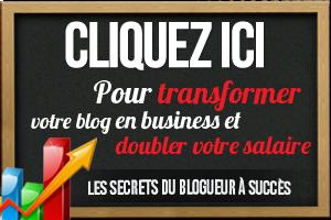 Secrets du Blogueur