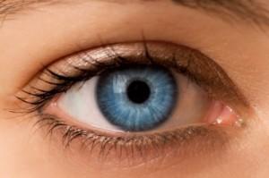 VAK les clefs d'accès visuelles