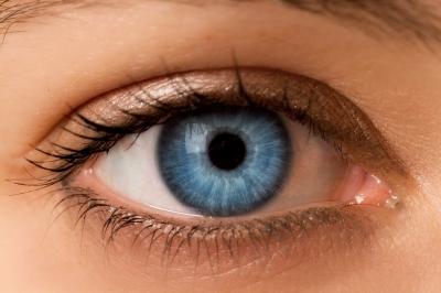 La PNL et les clés d'accès visuelles VAK