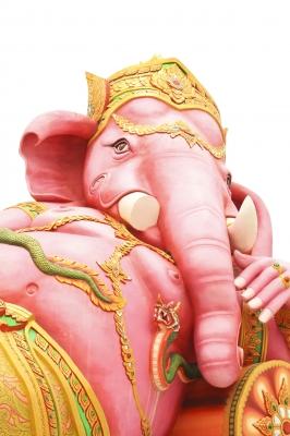 Mémoire : comment faire pleurer un éléphant en 5 secondes