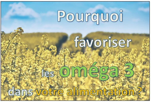 omega 3 alimentation omega 6 ratio