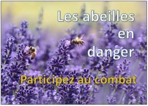 abeilles en danger apiculteurs en lutte