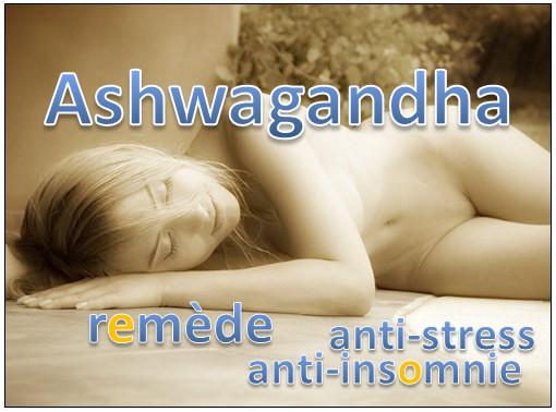 Ashwagandha – remède contre le stress et l'insomnie