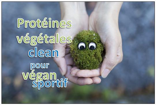 proteines vegetales vegan poudre