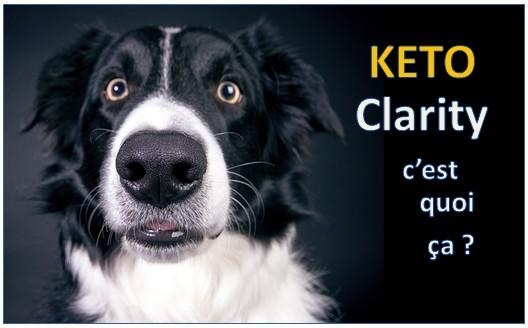 Keto Clarity : expérimentation du régime cétogène [livre]
