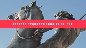 Analyse Transationnelle vs PNL