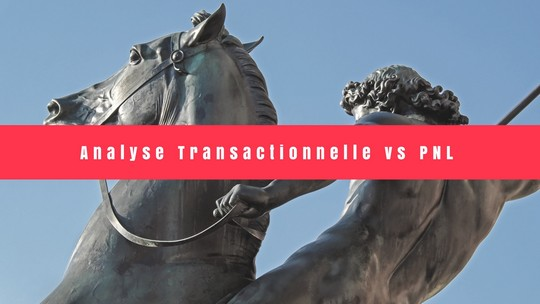 Analyse Transationnelle vs PNL